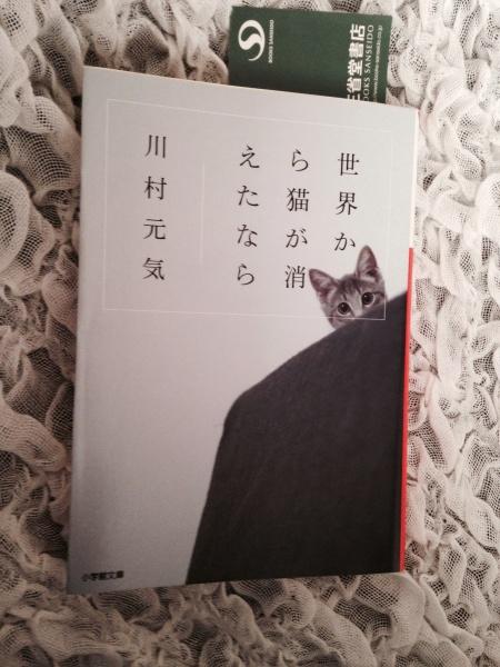 フリーアナウンサー シンガー 廣木弓子 オフィシャルサイト K-MIX 本