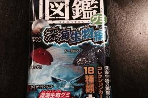 フリーアナウンサー シンガー 廣木弓子 オフィシャルサイト K-mix 生物図鑑 グミ めんだこ 1